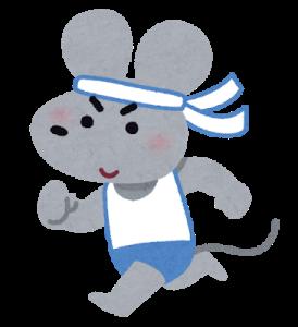 マラソンしているネズミ